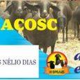 No sábado da EXPOLAJES, dia 3, será realizado pela primeira vez o Leilão da Emparn e Acosc, um momento em que os produtores rurais de Lajes e da região poderão […]