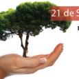 Ontem, 21, foi comemorado o dia da árvore e o Campus Avançado Lajes lança campanha convidando alunos e servidores a doarem uma planta para o campus! Com o objetivo de […]