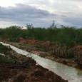 O Governo do Estado concluiu a operação para esvaziamento da Barragem São Miguel II, no município de Fernando Pedroza, Região Central do Rio Grande do Norte. Foi aberto um vertedouro […]
